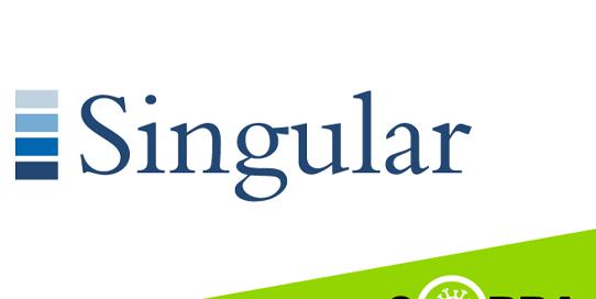singular logo
